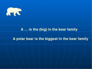 A … is the (big) in the bear family A polar bear is the biggest in the bear f