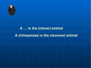 A … is the (clever) animal A chimpanzee is the cleverest animal