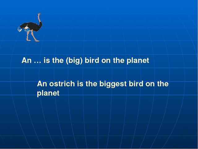 An … is the (big) bird on the planet An ostrich is the biggest bird on the pl...