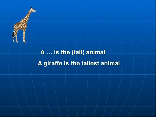 A … is the (tall) animal A giraffe is the tallest animal