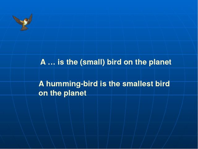 A … is the (small) bird on the planet A humming-bird is the smallest bird on...