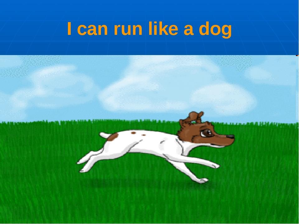 I can run like a dog