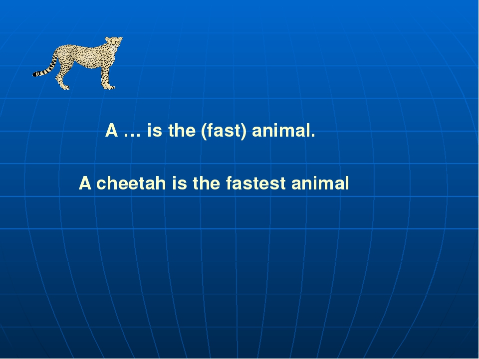 A … is the (fast) animal. A cheetah is the fastest animal