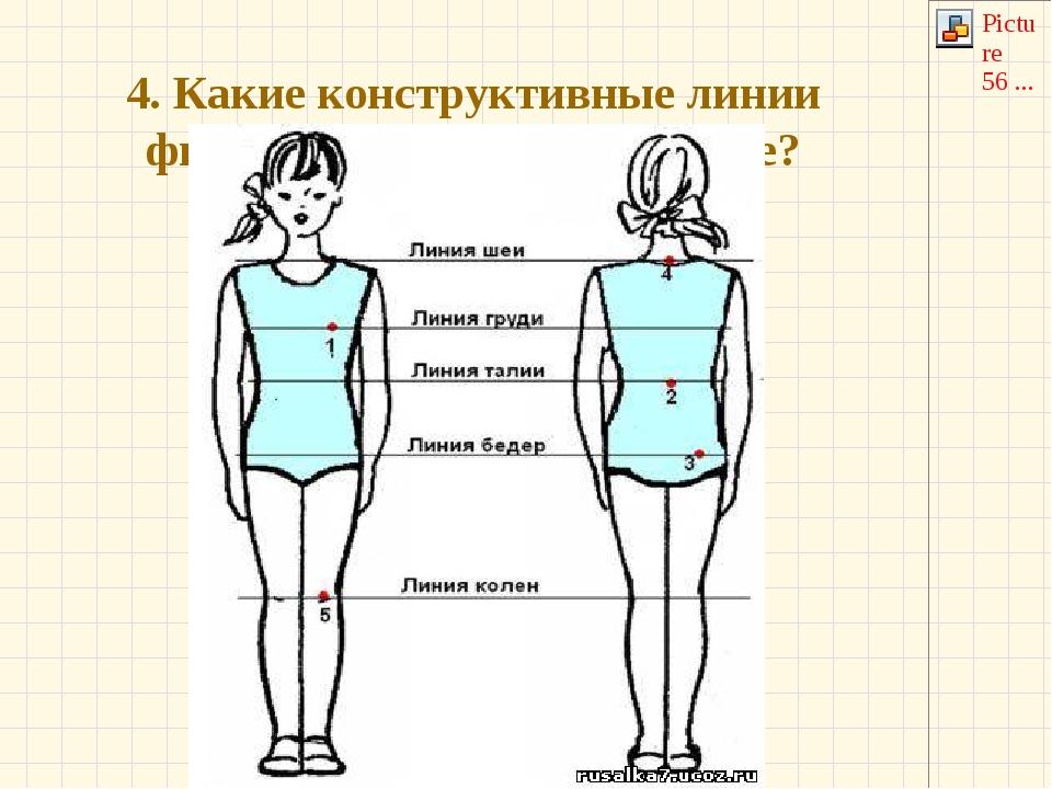 4. Какие конструктивные линии фигуры показаны на рисунке?
