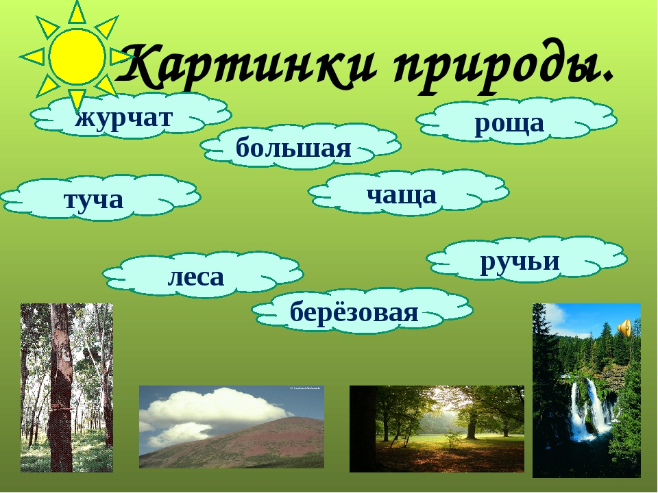 Картинки природы. журчат роща ручьи берёзовая чаща туча большая леса