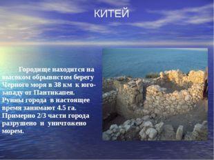 Городище находится на высоком обрывистом берегу Черного моря в 38 км к юго-з