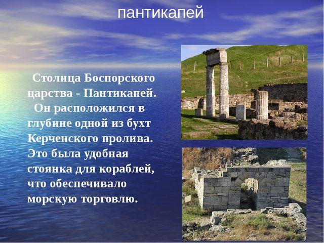 Столица Боспорского царства - Пантикапей. Он расположился в глубине одной из...
