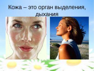 Кожа – это орган выделения, дыхания