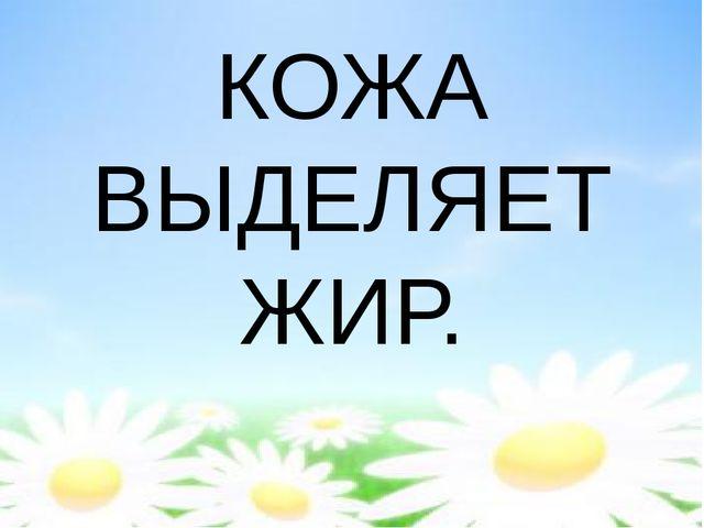 КОЖА ВЫДЕЛЯЕТ ЖИР.