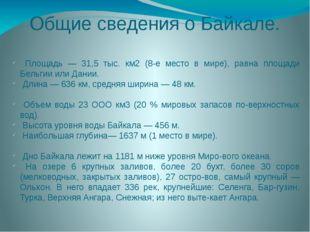 Общие сведения о Байкале. Площадь — 31,5 тыс. км2 (8-е место в мире), равна п