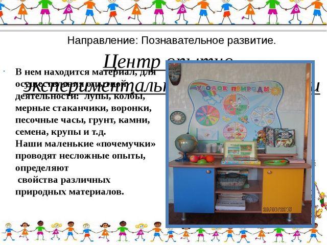 Направление: Познавательное развитие. Центр опытно-экспериментальной деятель...