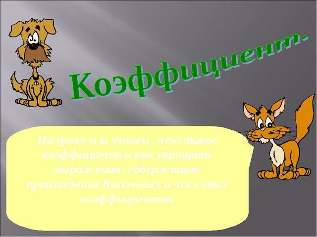 На уроке мы узнаем, что такое коэффициент и как упрощать выражения, содержащи...