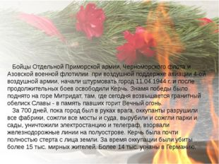 Бойцы Отдельной Приморской армии, Черноморского флота и Азовской военной фло