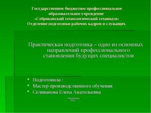 Государственное бюджетное профессиональное образовательное учреждение «Себряк