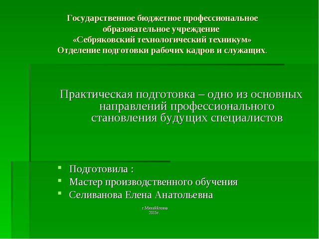 Государственное бюджетное профессиональное образовательное учреждение «Себряк...