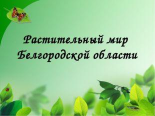 Растительный мир Белгородской области