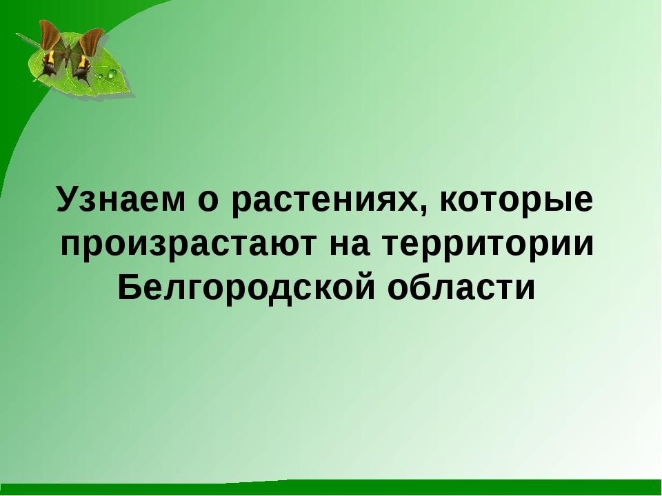 Узнаем о растениях, которые произрастают на территории Белгородской области