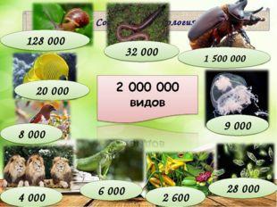 Современная зоология 4 000 9 000 20 000 32 000 6 000 2 600 128 000 28 000 8 0
