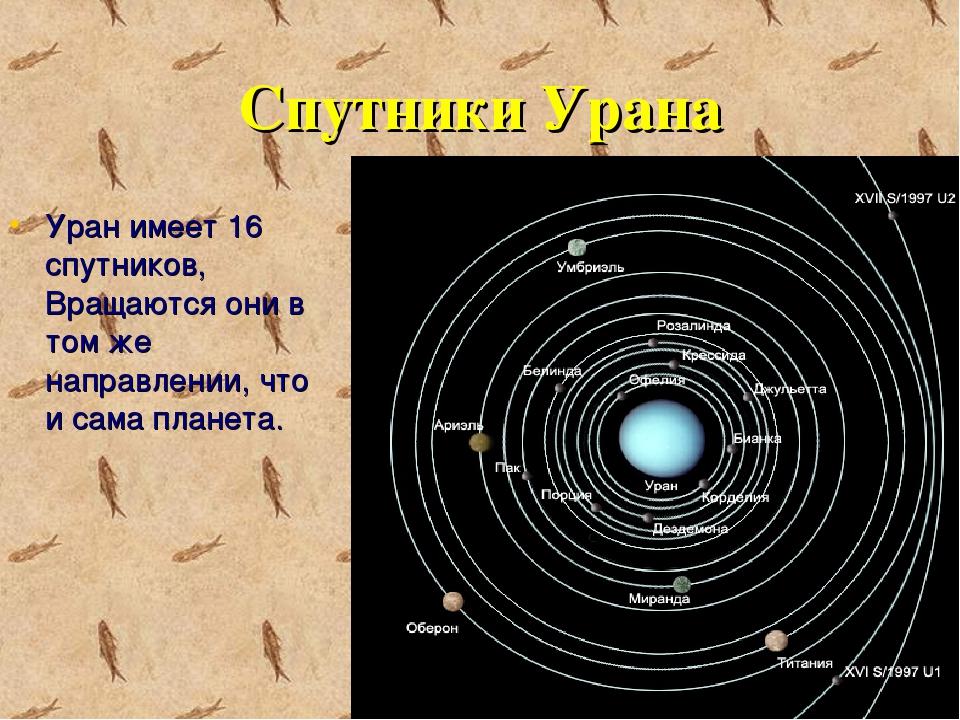 Спутники Урана Уран имеет 16 спутников, Вращаются они в том же направлении, ч...