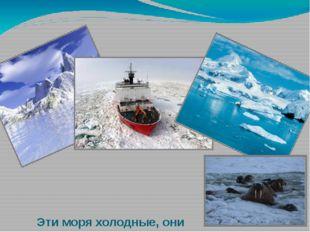 Эти моря холодные, они покрываются льдами на большую часть года. Суда по ним