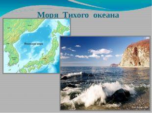 Моря Тихого океана