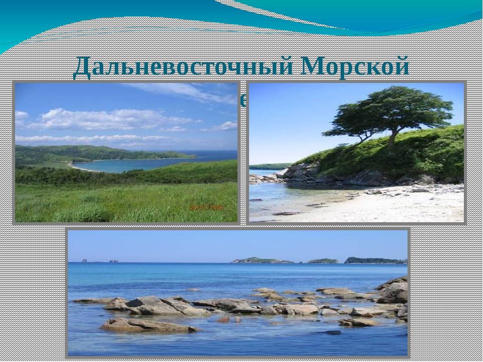 Дальневосточный Морской заповедник