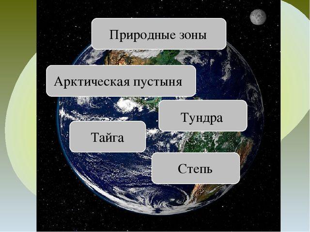 Арктическая пустыня Тундра Тайга Степь Природные зоны