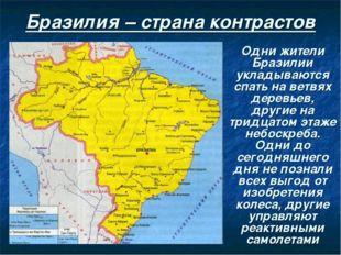 Бразилия – страна контрастов Одни жители Бразилии укладываются спать на ветвя