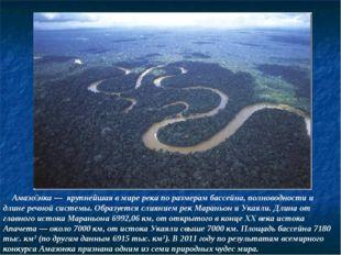 Амазо́нка — крупнейшая в мире река по размерам бассейна, полноводности и дли