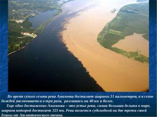 Во время сухого сезона река Амазонка достигает ширины 11 километров, а в сез