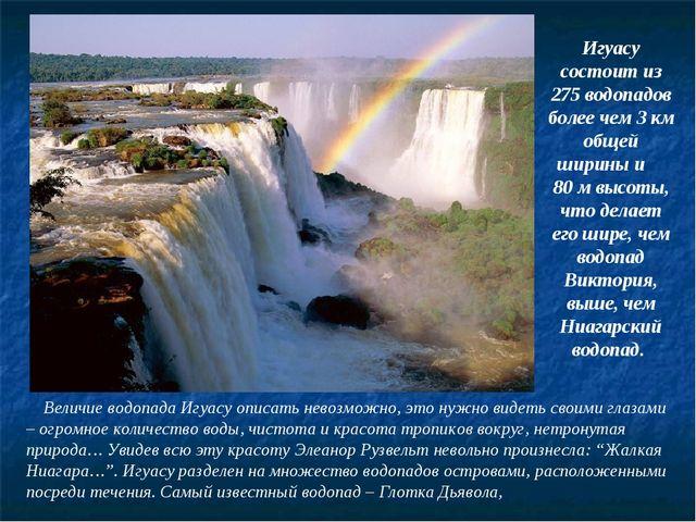 Величие водопада Игуасу описать невозможно, это нужно видеть своими глазами...