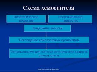 киекова эльмира ринатовна Схема хемосинтеза Неорганическое вещество Неорганич