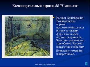 киекова эльмира ринатовна Каменноугольный период, 55-75 млн. лет Расцвет земн