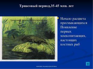 киекова эльмира ринатовна Триасовый период,35-45 млн. лет Начало расцвета пре