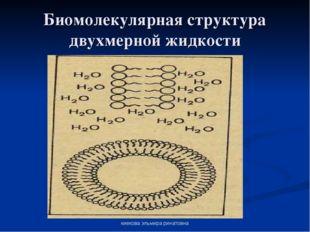киекова эльмира ринатовна Биомолекулярная структура двухмерной жидкости киеко