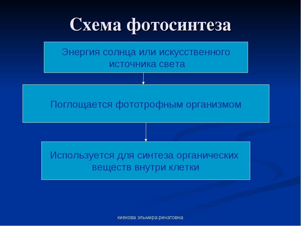 киекова эльмира ринатовна Схема фотосинтеза Энергия солнца или искусственного...