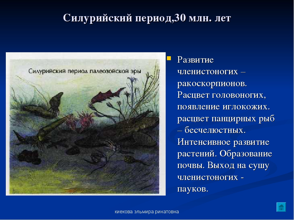 киекова эльмира ринатовна Силурийский период,30 млн. лет Развитие членистоног...