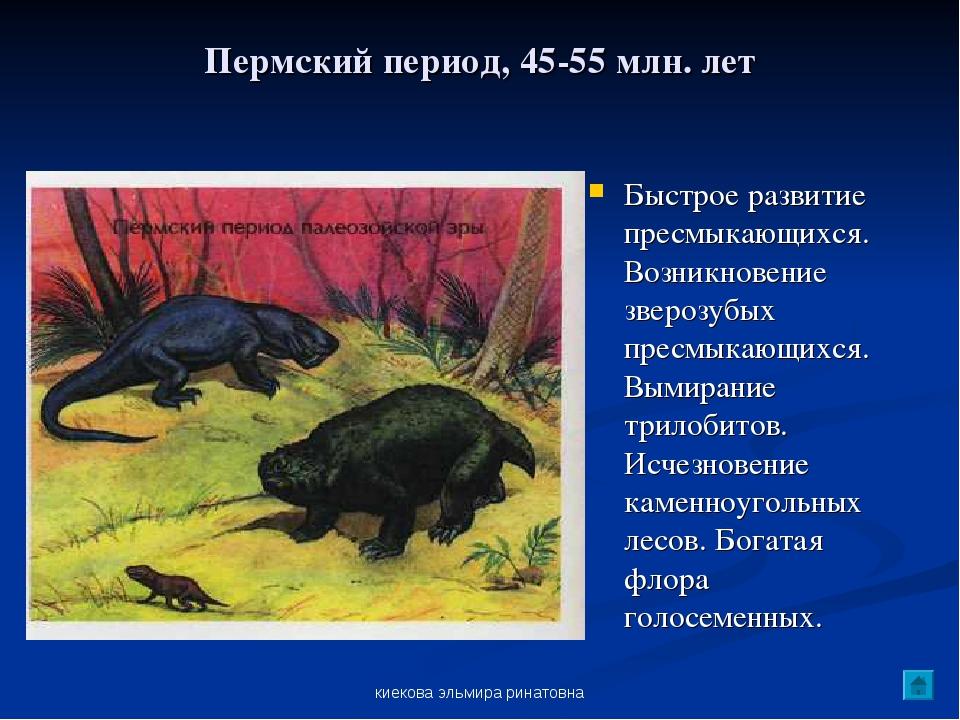 киекова эльмира ринатовна Пермский период, 45-55 млн. лет Быстрое развитие пр...