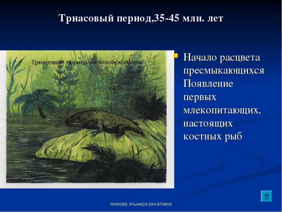 киекова эльмира ринатовна Триасовый период,35-45 млн. лет Начало расцвета пре...