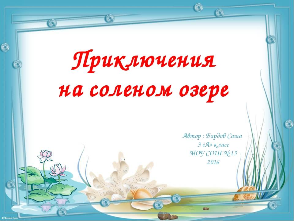 Приключения на соленом озере Автор : Бардов Саша 3 «А» класс МОУ СОШ № 13 2016