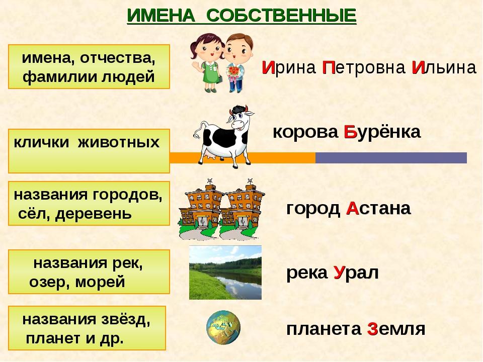 ИМЕНА СОБСТВЕННЫЕ имена, отчества, фамилии людей клички животных названия гор...