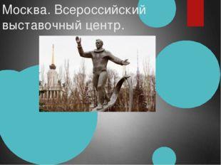 Москва. Всероссийский выставочный центр.