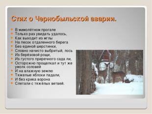 Стих о Чернобыльской аварии. В мимолётном прогале Только раз увидать удалось