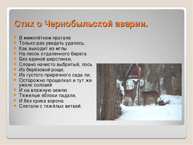 Стих о Чернобыльской аварии. В мимолётном прогале Только раз увидать удалось...
