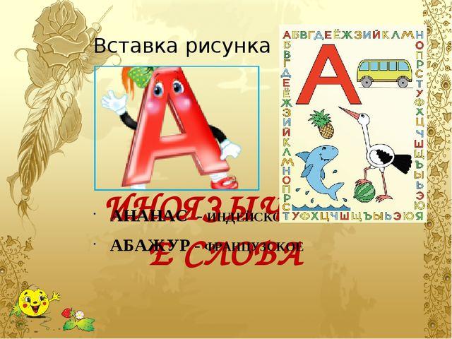 ИНОЯЗЫЧНЫЕ СЛОВА АНАНАС  - ИНДЕЙСКОЕ АБАЖУР - ФРАНЦУЗСКОЕ