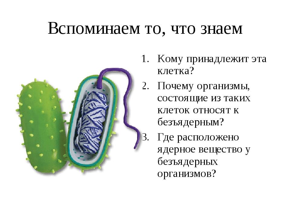 Вспоминаем то, что знаем Кому принадлежит эта клетка? Почему организмы, состо...