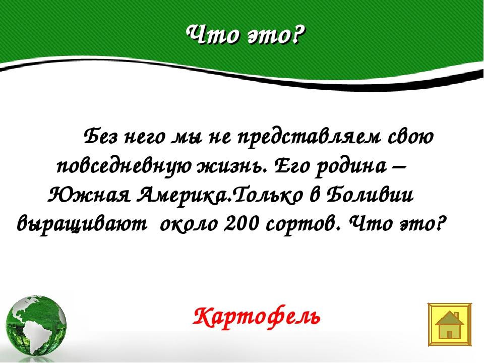 Что это? Text in here 2005 2006 2007 2008  Без него мы не представляем свою...