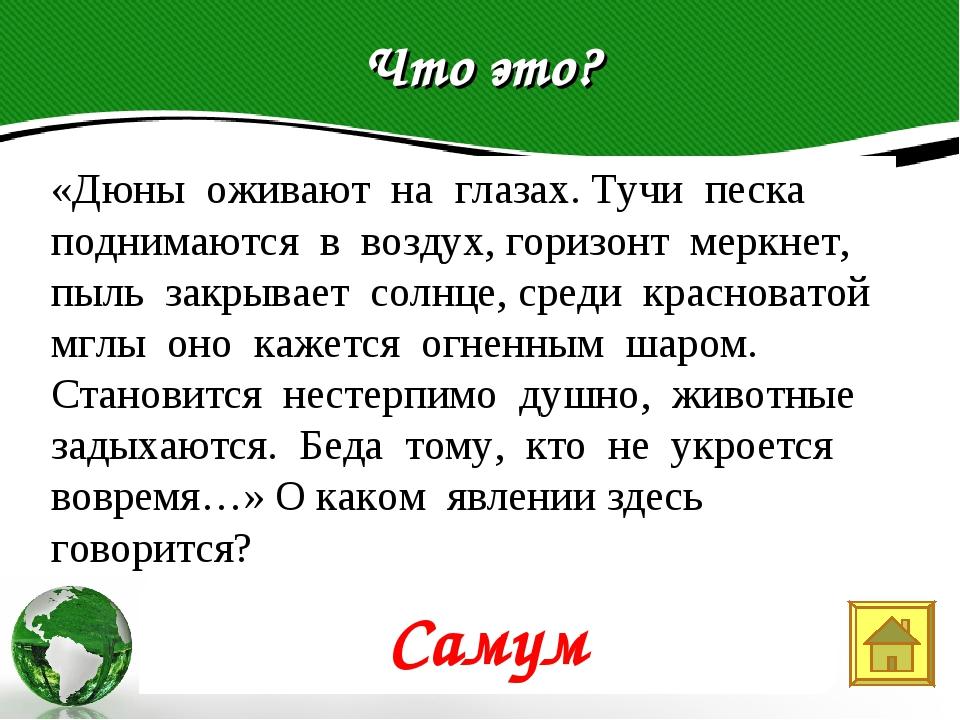 Что это? Text in here 2005 2006 2007 2008 «Дюны оживают на глазах. Тучи песка...