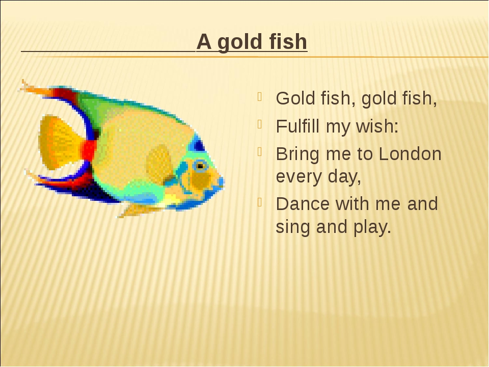 A gold fish Gold fish, gold fish, Fulfill my wish: Bring me to London every...