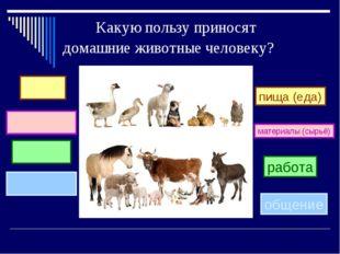 Какую пользу приносят домашние животные человеку? пища (еда) работа материал
